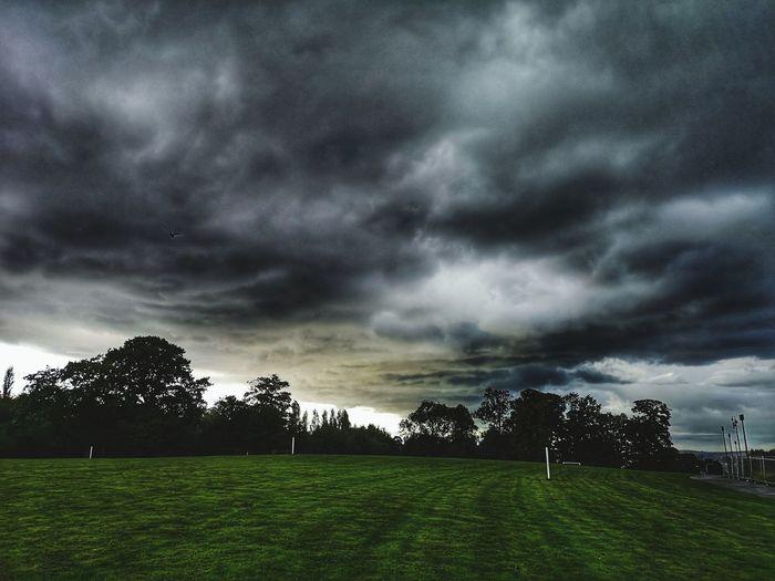 Tree Soccer Field Grass Sky Cloud - Sky