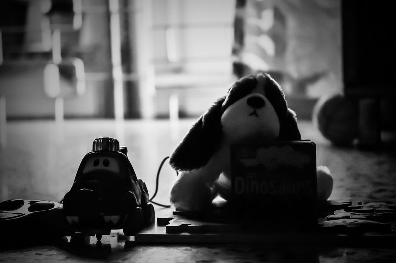 Toy Photography Toys No People Puppy Light And Shadow Remote Control Car Black And White Mans Best Friend Dog Car Still Life Still Life Photography