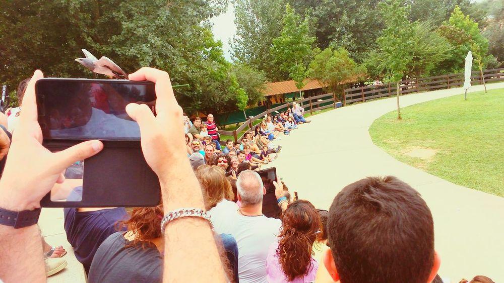 EyeEm Selects Real People Holydays Trips Birds Of EyeEm  Parque Natural Cavarcenos