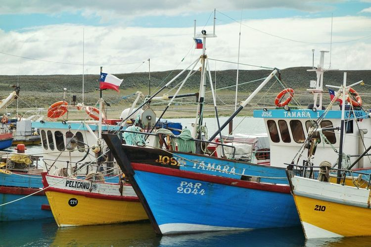 Boats Chile Harbour Patagonia