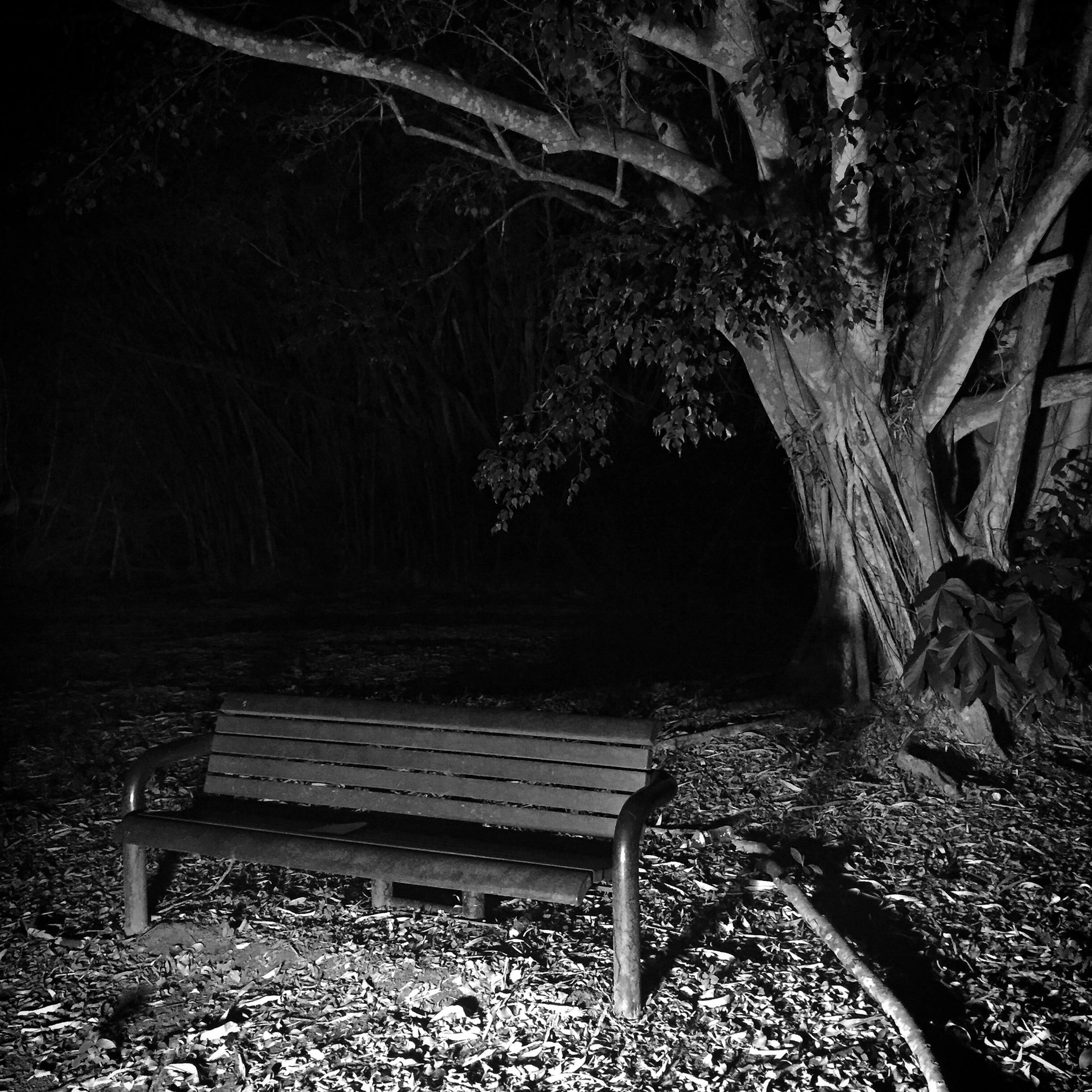 wood - material, abandoned, bench, old, empty, obsolete, damaged, absence, wood, chair, tree, wooden, tranquility, seat, day, nature, no people, run-down, field, deterioration