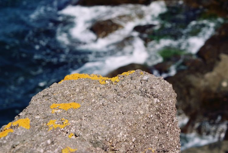 Rock - Object Close-up Nature Outdoors Day Focus On Foreground No People