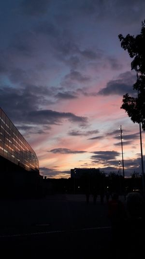 We stay awake till the clouds turn purple again! Sunset Sky Cloud - Sky Outdoors City Malmö Sweden