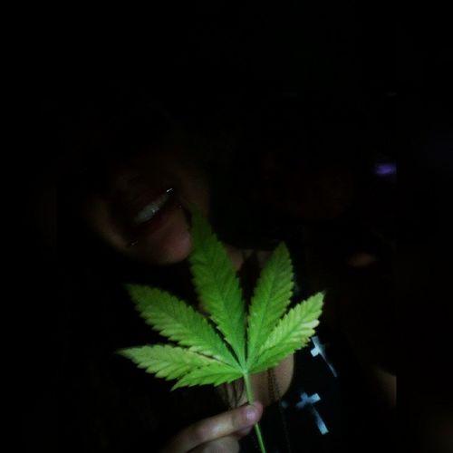 Squareinstapic Mery Maria Fogliolinabella Marijuana Weed Eba