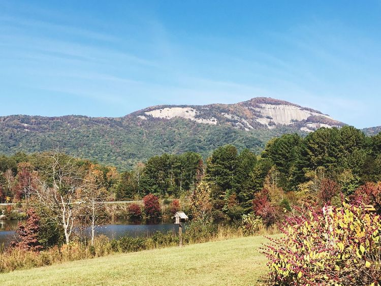 Table Rock, South Carolina ⛰ Table Rock South Carolina Mountain Rock Pond Nature Trees Beauty In Nature