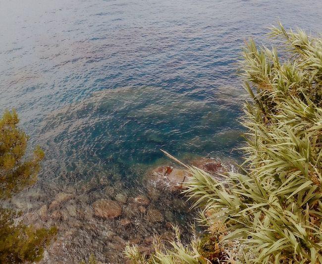 Colour Of The Sea Sea Lovers I <3 Seascape EyeEm Nature Lover