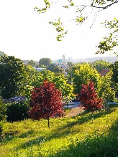 The OO Mission Tuzla,Bosnia And Herzegovina Beautiful Nature City View  Goranvonkarkin Pure Beauty