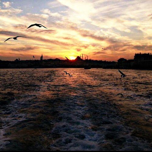 Eminönün'den gün batımı (yaz gelse ya😳) Eminönü Günbatımı Nofilter Закат летом должны прийти Sunset Picsart