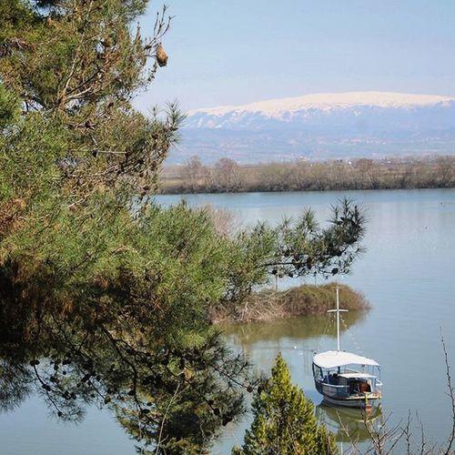 Α beautiful morning in LakeKerkini ! Catherine_d_milosevich_photography Gr Serres Laketrip Discovergreece Travelstory Chronicleofatravel