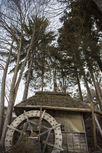 Low angle view of built structure against trees
