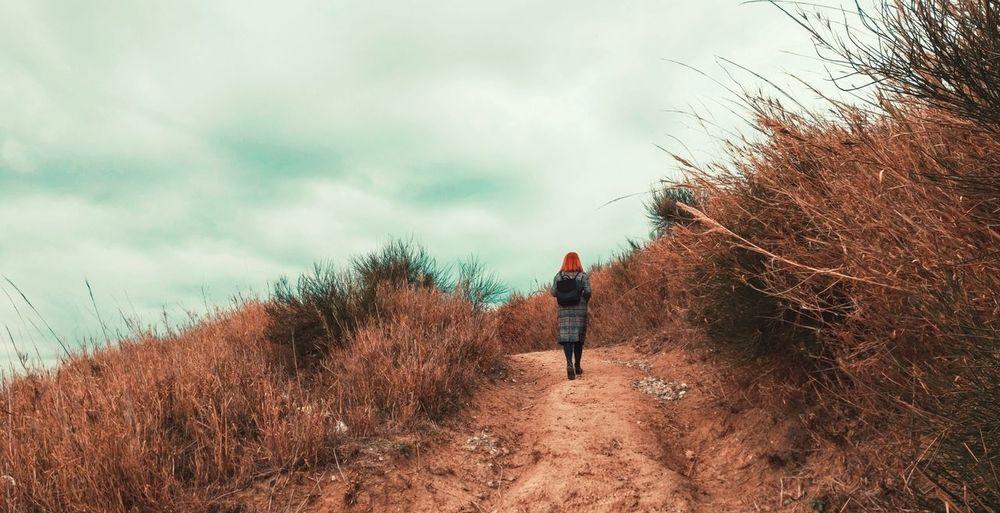 Rear View Of Female Hiker Walking On Mountain
