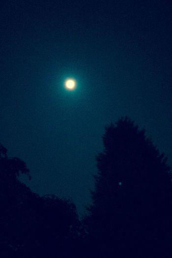 Super Moon ? Night Moon