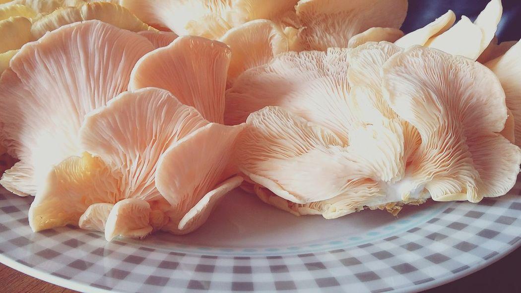 Comiendo Como ReyesPink Wild Mushrooms Organic Markets