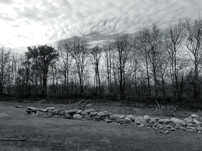 Empty Lake Nature Landscape Bare Trees No People Outdoors Sky Clouds Peaceful Alone In Nature Silence Black And White Catasauqua Lake Hanover Canal Park