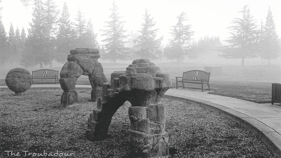 "Showcase: February ""The mist of the early morning hours approaching the playground"" Protecting Where We Play First Eyeem Photo Nature Lover Relaxing Check This Out Hello World Cheese! Taking Photos Monochrome No People Black And White Collection  Enjoying Life Hanging Out Where I Jog Everyday Samsungphotography Throughmyeyes Mobilephotography Snapshots Of Life From My Point Of View Photo Jogging Places I've Been Today in Sacramento, California"