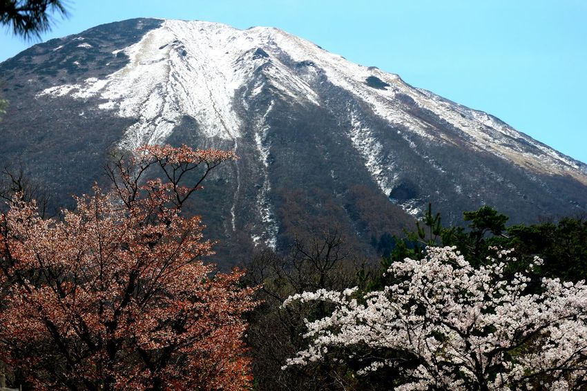 Mountain Snow Winter Tree Snowcapped Mountain Cold Temperature Volcanic Landscape Mountain Peak Volcano Sky