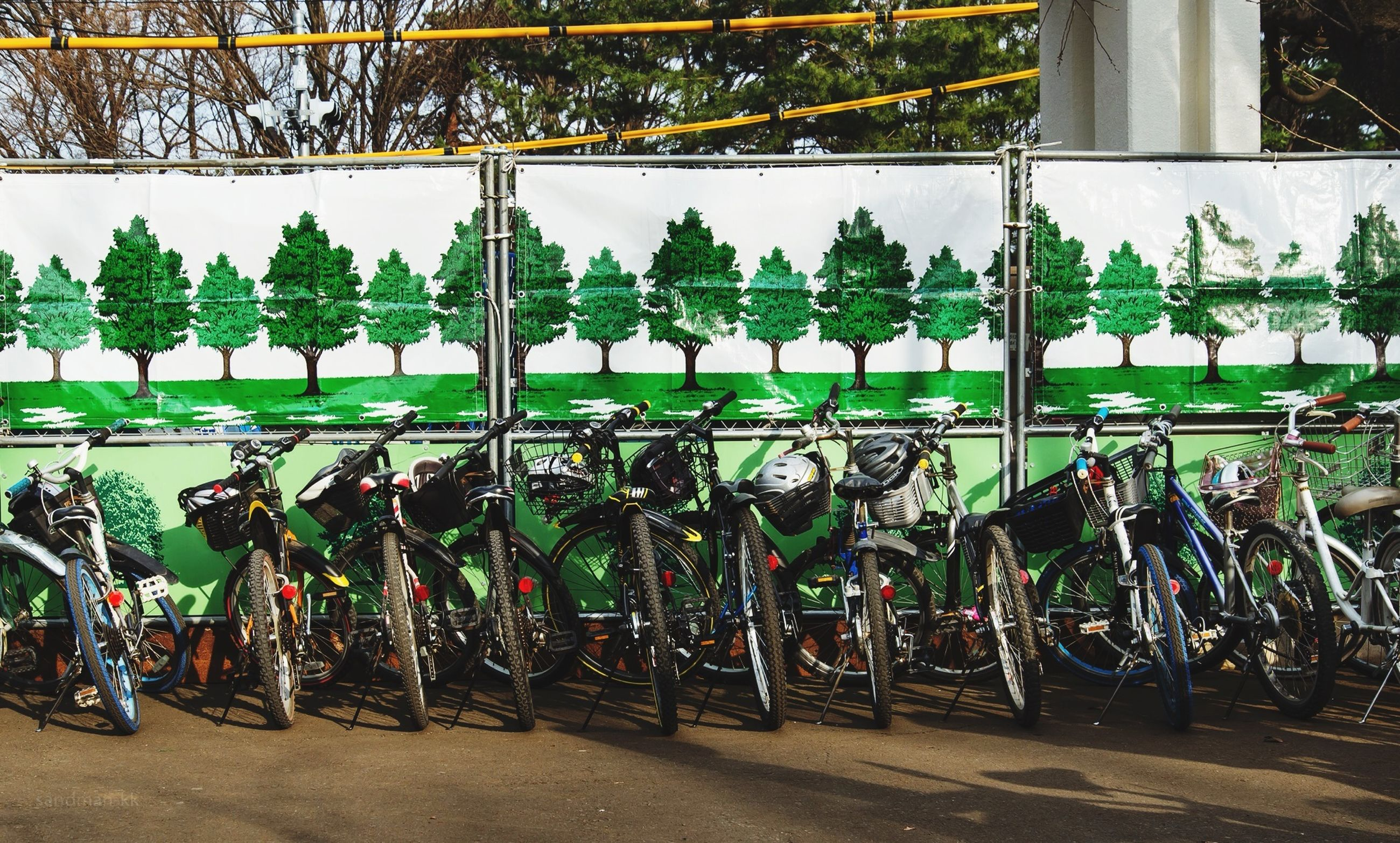 transportation, land vehicle, street, road, mode of transport, high angle view, day, bicycle, city, outdoors, large group of people, men, plant, growth, city life, building exterior, incidental people, car, tree