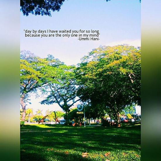 💎 special made by:me theme: Nature Place:Taman bulatan Given Quotes by: UmmiHani