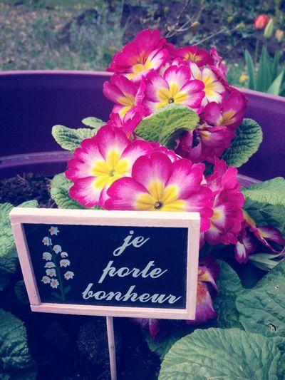 ? Flower First Eyeem Photo