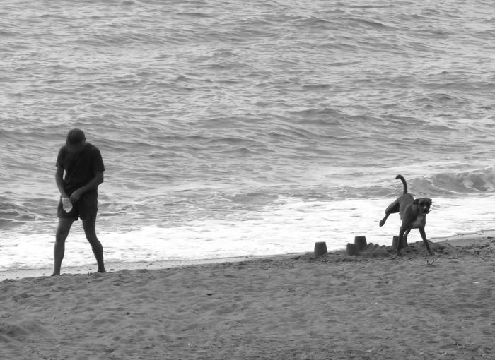 Beach Beach Photography Black & White Black And White Day Dog Leisure Activity Lifestyles Men Nature Outdoors Person Photographic Sequence Of 4 Photos Scenics Sea Shore Tranquil Scene Tranquility Vacations Water Wave Weekend Activities