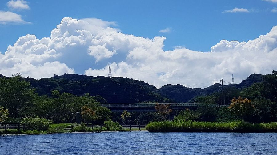 Summer Clouds And Sky Nature 夏の雲 Tree Water Mountain Blue Lake Pinaceae Sky Cloud - Sky