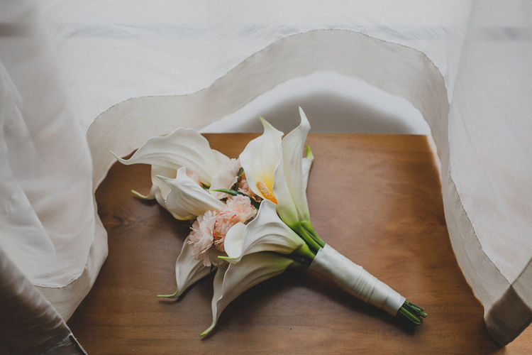 High angle view of white rose on table