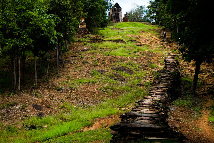 Buddha image standing On the hill and have stoebridge go to top Tree Nature Growth Outdoors Tranquility Field Tranquil Scene Scenics Beauty In Nature The Way Forward No People Landscape Green Color Agriculture Day Grass Sky Thailand🇹🇭 Archaeology Sukhothai Ancient Travel Urban Skyline Built Structure
