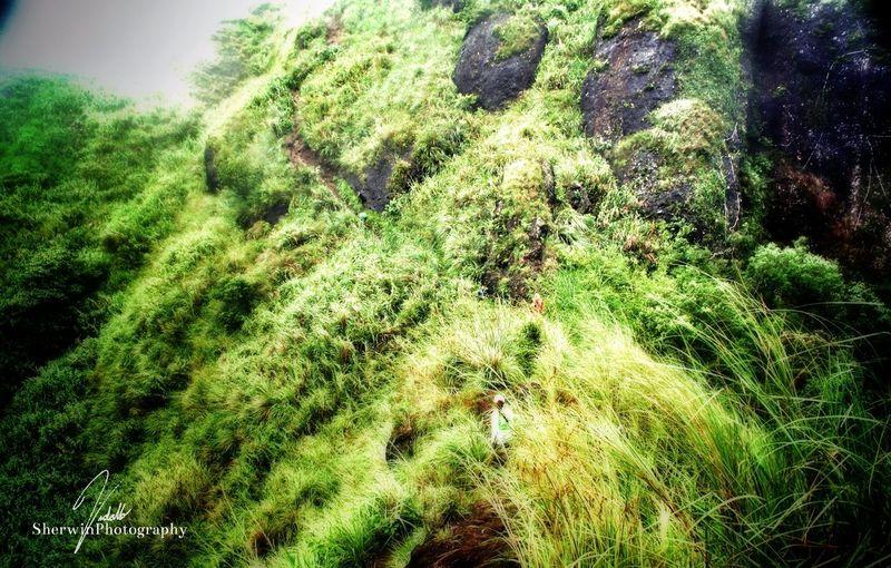 Eyeem Philippines Landscape High Mountain Treking Portrait