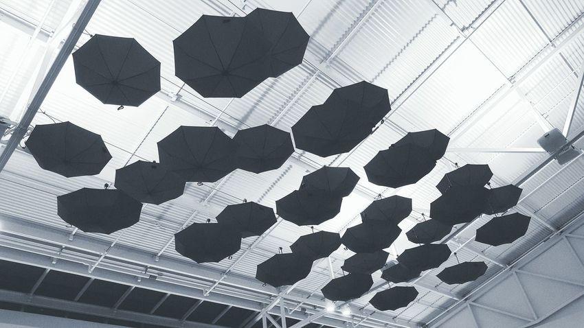Umbrella☂☂ Umbrellas Umbrella Flying Umbrellas EyeEmNewHere