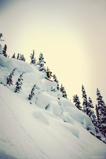 Pillow Poppin off Oboe Ridge in the Whistler BackcountryWinter White By CanvasPop
