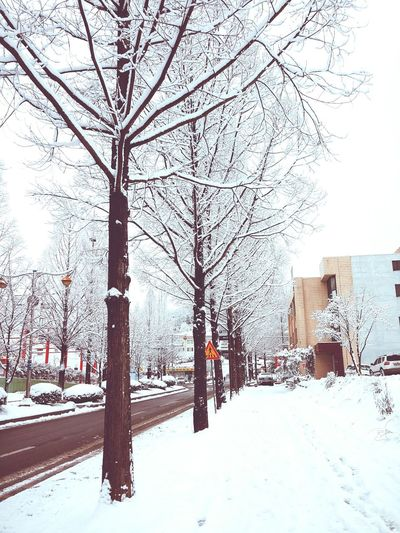 Cold Winter ❄⛄ On The Road Snow ❄ CityWalk