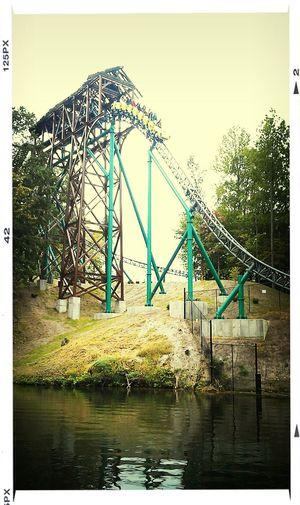 Roller coaster ride!