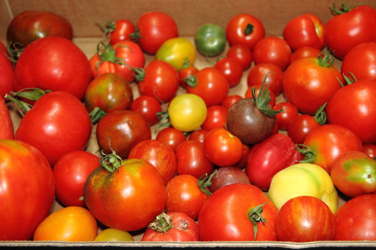 Abundance Backgrounds Close-up Food Food And Drink Freshness Fruit Full Frame Healthy Eating Indoors  Large Group Of Objects Market No People Raw Food Red Retail  Ripe Still Life Tomaten Tomato Vegetable Wellbeing