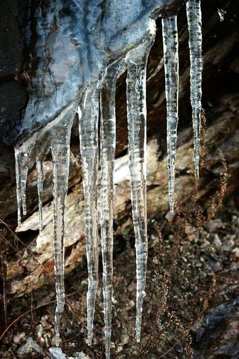 Frozen Water Eyeem Icicles Iced Icicle Icicles DECEMBER2015 Frozen Icicleporn Icicle Watching Nature_ Collection  Nature Photography Nature_collection Its Cold Outside