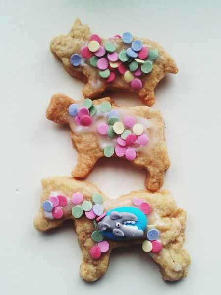 Cookie Animals Makro Fun