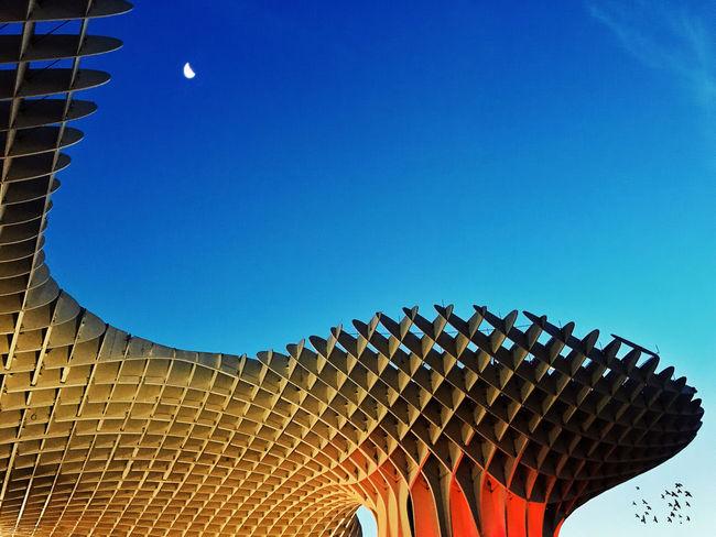 Metropol Parasol, Sevilla The Architect - 2015 EyeEm Awards Mobilephotography IPhoneography NEM Architecture The Moment - 2015 EyeEm Awards Iphoneonly EyeEm Best Shots Colour Of Life