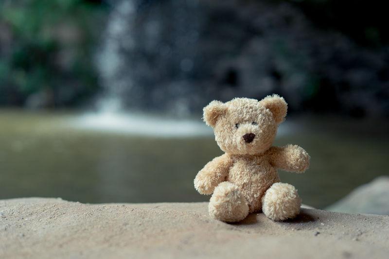 Teddy bear on rock