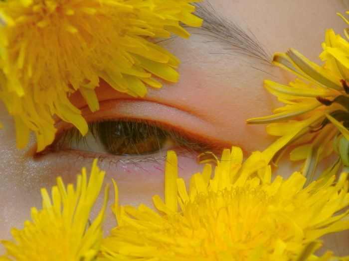 Yellow Flower Close-up One Person Flowering Plant Plant Human Body Part Headshot Real People Portrait Body Part Leisure Activity Freshness Human Face Women Vulnerability  Human Eye Lifestyles Fragility Flower Head Beautiful Woman Obscured Face Eyelash My Best Photo