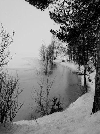 Winter Snow Walking Around