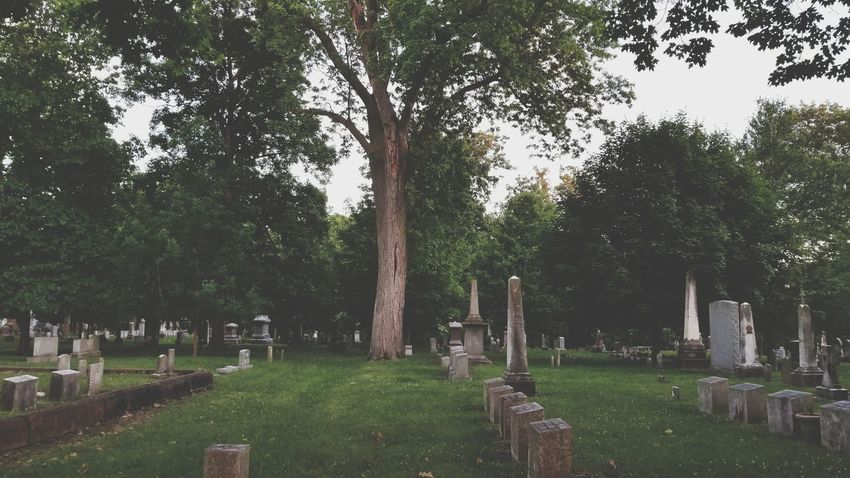 Tombstone Tree Cemetery Memorial Grave Green Color Grass Cross Outdoors Graveyard Tranquility Gravestone Branch Nature Day No People Sky The Great Outdoors - 2017 EyeEm Awards