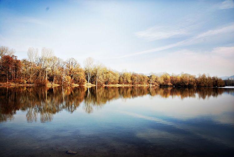 Reflections EyeEm Best Shots - Nature EyeEm Nature Lover EyeEm Best Shots EyeEmNewHere Water Reflection Tree Sky Tranquility Lake Tranquil Scene Reflection Lake Outdoors