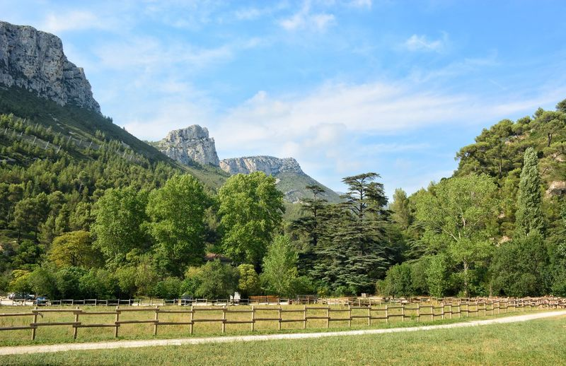 Landscape Wild Nature France🇫🇷 Mountain Farmland