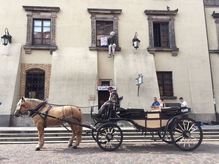 Transportation Architecture Horse The Purist (no Edit, No Filter) Poland Warsaw Old Town Carriage
