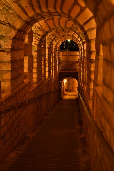 Dark Paris Paris, France  Sightseeing Travel Arch Architecture Available Light Basement Built Structure Bulb Catacombes Catacombes De Paris Catacombs Cellar Cellary Darkness And Light Day Destination Indoors  Katakomben No People Stone The Way Forward Travel Destinations