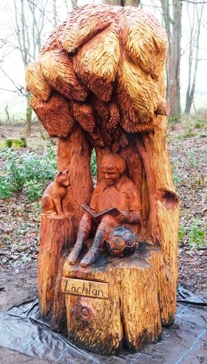 The magical fairy world found deep within Fullarton Woods, Troon, South Ayrshire, Scotland. Ayrshire, Scotland Animal Representation Animal Themes Art And Craft Close-up Day Fullarton Woods Nature No People Outdoors Sculpture Statue Tree Tree Trunk Troon Wood Carving