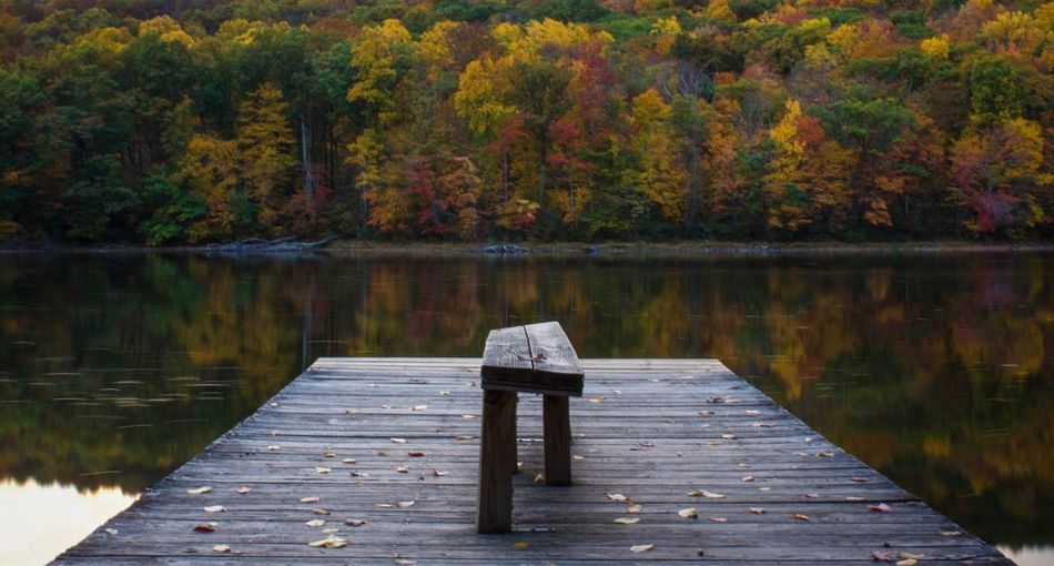 Rear View Of Pier On Lake In Front Of Autumn Trees