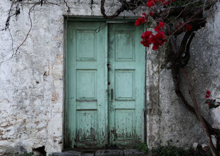 Green Doors Greece Crete Green Roses Rose - Flower Old Ruin Withered  Flower Entry Door Red Protection Safety House Closed Entrance Close-up Closed Door Latch Locked Doorknob Padlock Keyhole Lock Entryway Door Knocker Front Door Wooden Doorway First Eyeem Photo