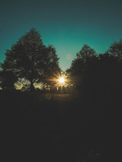 Beauty In Nature Clear Sky Day Landscape Nature No People Outdoors Scenics Silhouette Sky Sun Sunlight Sunset Tranquil Scene Tranquility Tree