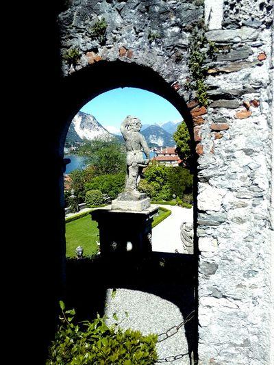 Tree Architecture Arch History Italy🇮🇹 Lake Maggiore ❤️ Isola Bella Alpi Lake Mountain