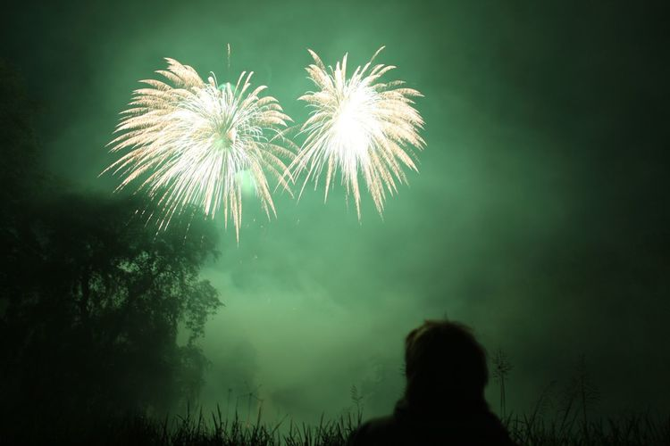 Person Watching Firework Display At Night
